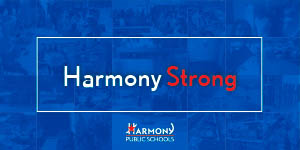 Harmony Strong | Horizontal Banner